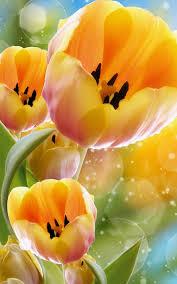 زهور الربيع خلفيات حية For Android Apk Download