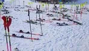 """Résultat de recherche d'images pour """"skis"""""""