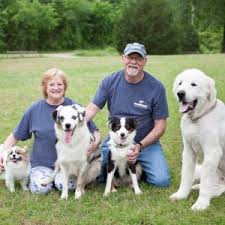 DogWatch by Arkansas Pet Safety Systems, LLC | Royal, AR | Hidden Dog  Fences – It's All About Your Dog