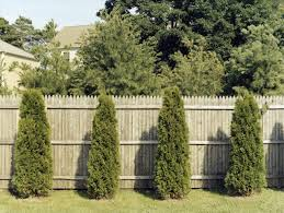 Can You Paint A Vinyl Fence Fence Line Landscaping Ideas For Creative Homeowners Equalmarriagefl Vinyl From Can You Paint A Vinyl Fence Pictures
