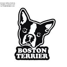 Volkrays Creative Car Sticker Boston Terrier Accessories Reflective Waterproof Cover Scratches Sunscreen Vinyl Decal 11cm 8cm Car Stickers Aliexpress