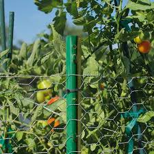Expert Gardener Powder Coated Steel Fence U Post Green 4 Best Agriculture