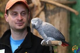 0309_birdshow07.jpg   Zoo Knoxville Media Manager