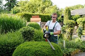 professional landscape gardener