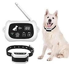 5 Best Wireless Invisible Dog Fence Systems November 2020 Review