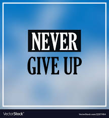 never give up inspiration and motivation quote vector image