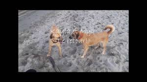 Kayla et Mya le retour! - YouTube