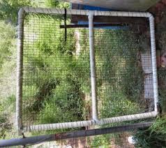 Building Pvc Pipe Gates Karen Goat Keeper
