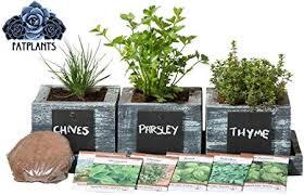 fatplants cedar planter box