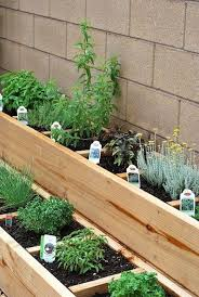 raised bed herb garden like to do a