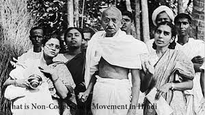 What is Non-Cooperation Movement in Hindi   Non Cooperation Movement