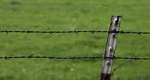 Wire Fence Google Search Chain Link Fence Wire Fence Barbed Wire Fencing