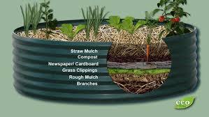 building a raised bed garden ecos