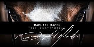 raphael macek macek gallery