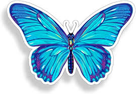 Amazon Com Blue Butterfly Sticker Cup Laptop Car Vehicle Window Bumper Colorful Insect Vinyl Decal Graphic Everything Else