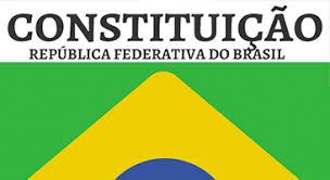 Instituições de Ensino Superior debaterão os 30 anos da Constituição  Federal - Portal UNIFESSPA