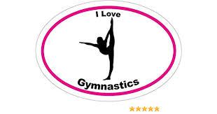 Amazon Com Wickedgoodz I Love Gymnastics Vinyl Window Decal Gymnastics Bumper Sticker Perfect Gymnastics Mother Team Or Coach Gift Made In The Usa Sports Outdoors