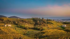 Strada del Prosecco e Vini dei Colli Conegliano Valdobbiadene -  Valdobbiadene.com - Il sito turistico ufficiale di Valdobbiadene