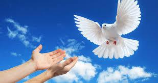 El primer objetivo de la religión es la paz interna y externa ...