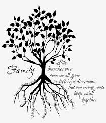 Family Tree Root Names Giant Wall Decal Sketch Family Tree Drawing Free Transparent Png Download Pngkey