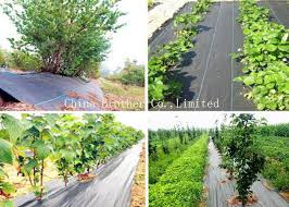 ground weed control fabric weed barrier