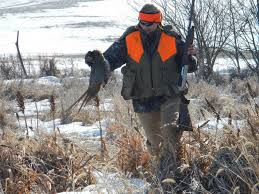 How To Get Your Own Private Hunting Property And Improve Its Habitat Outdoor Life