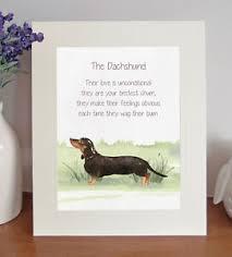 dachshund bestest chum novelty dog poem