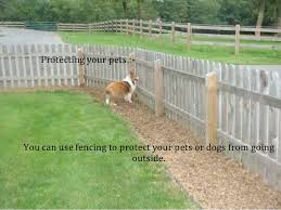 Tips To Choose The Right Fence For Your Garden