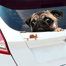 Amazon Com Car777 Car Decals Funny Cute Pet Pug Dog Snail 3d Car Window Decals Home Wall Sticker Decor Automotive