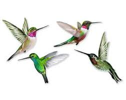 Humming Birds Window Clings Set Of 4 Anti Collision Window Clings To Prevent Bird Strikes On Window Glass Window Clings Bird Strike Bird