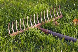 diffe types of rakes for the garden