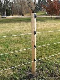 30 Electric Fence For Cattle Ideas Electric Fence Fence Electric Fence For Cattle