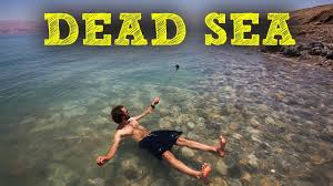 the dead sea why do you float