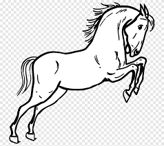 Tennessee Walking Horse Morgan Horse Animal Outline Horse White Png Pngegg