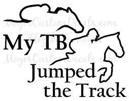 Ottb Off Track Thoroughbred Tb Horse Jumper 5 Decal Sticker U Choose Color For Sale Online Ebay