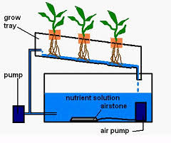 how to build an nft hydroponic