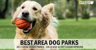Best Dog Parks In Northeast Ohio On Leash And Off Leash Options
