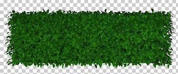 Lawn Artificial Turf Garden Hedge Png Clipart Artificial Turf Biome Download Evergreen Fence Free Png Download