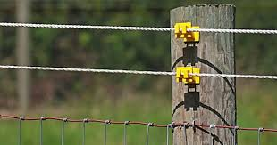 Ultimate Electric Fencing Guide Select Electric Fence Options By Animal Dairy Cattle Beef Cows Goa Electric Fencing For Horses Electric Fence Sheep Fence
