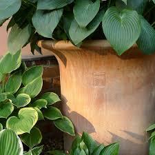 italian terrace fine terracotta pots