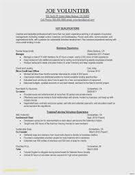 resume template s pdf resume resume sample