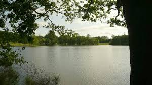 le lac picture of la maison du lac