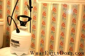 the best way to remove wallpaper what