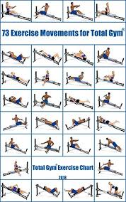 total gym exercise chart