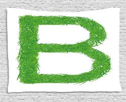Letter B Tapestry Kids Baby Boys Children Capital B Name Fresh Growth Environment Ecology Concept Wall Hanging For Bedroom Living Room Dorm Decor 60w X 40l Inches Green White By Ambesonne