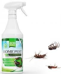 the 5 best bug sprays for home pest control