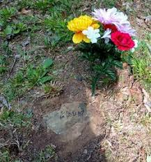 Flossie Smith (1929-1929) - Find A Grave Memorial