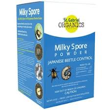 Ortho Home Defense Oz Fly Bait 2 Pack In The Pesticides Department At Lowes Com
