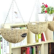straw flower hanging baskets afaiz me