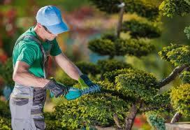 self employed landscape gardener